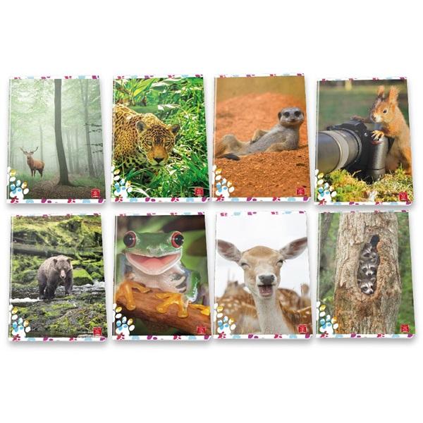 Pigna Animal Cute and Funny A4 tűzött 50lapos kockás füzet - 1